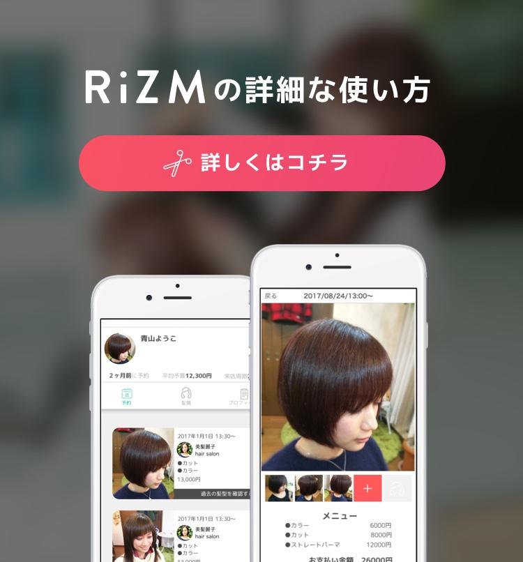 rizm-howto-use