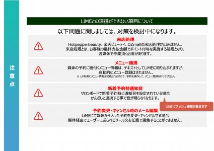 kanzashi-manual-kirei 29